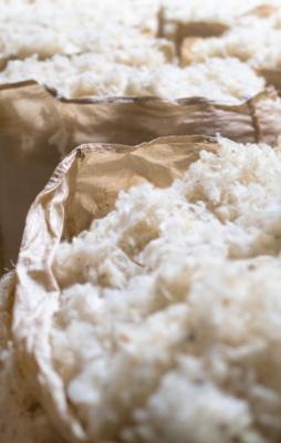 Ideales Material für den Teppich: Schafwolle