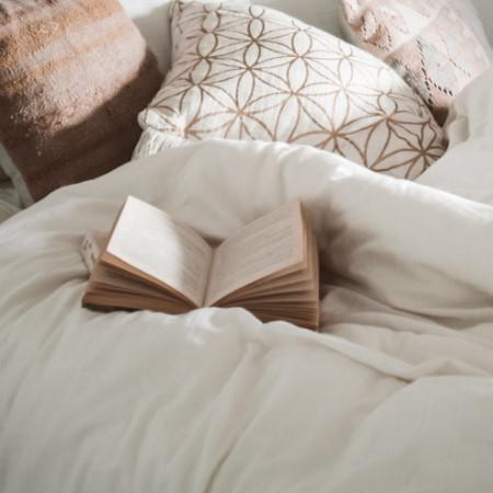 Mites source bedroom