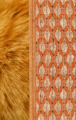 Fur colour matches rug colour